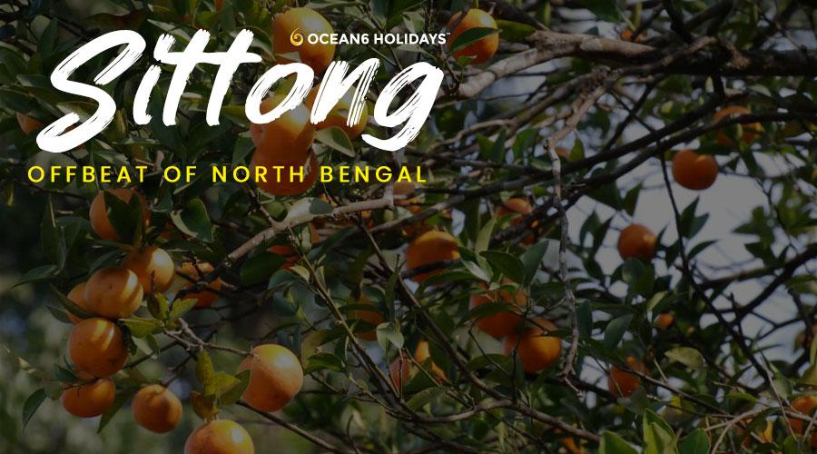 Sittong – The Orange Village Resort