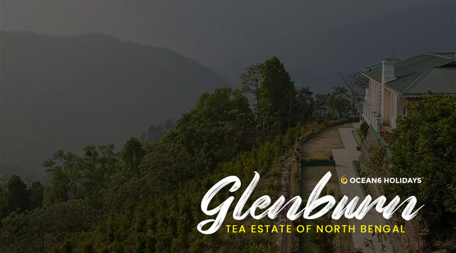 Glenburn Tea Estate
