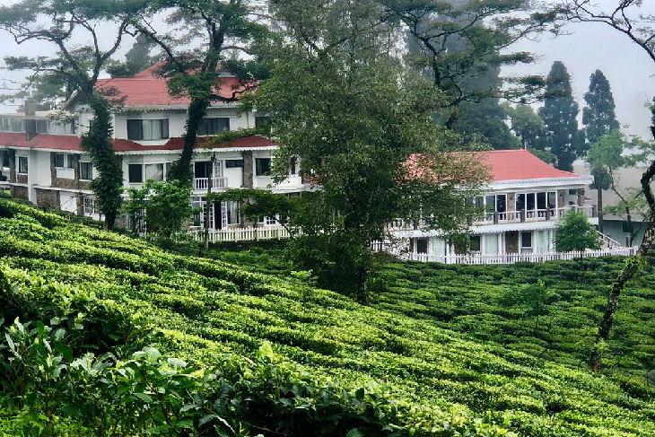 Sourenee Tea Estate