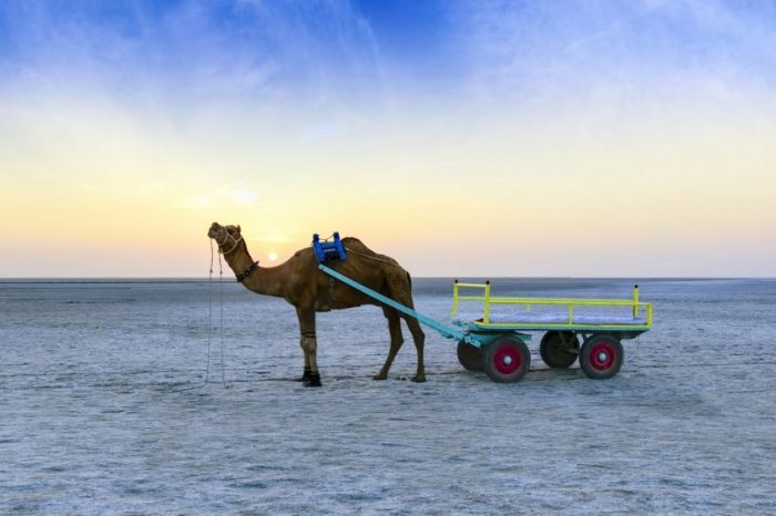 Rann of Kutch with Temple